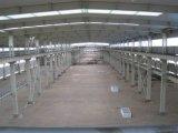 Light Steel Structure Godown/Storage Unit