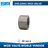 Hex Cap Pipe Fitting Coupling