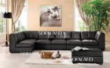 Modern Italy Leather Sofa (895#)
