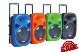 Professional Speaker Hot Sale Promoting Price Speaker F-28