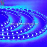 SMD5050 Blue Strip Rope Light