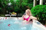 S601 Luxury SPA Bathtub with Plum Shape 5-6 People Jacuzzi