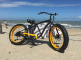 Very Famous and Popular Beach E Bike with 4.0/45inch Tyre
