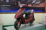 Vjr New Style Electric Motorcycle E-Scooter1200W (HD1200-3)