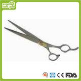 Professional Pet Grooming Scissors Pet Supply