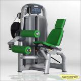 Seated Leg Curl Fitness Equipment