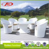 Nice Design White Garden Dining Set (DH-6060)