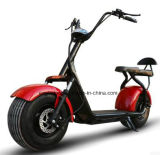 Hot Popular Halley Electric Scooter Motorcycle City Car 1000W 60V12ah for Adult (EE-001)