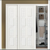 New Design Wardrobe Sliding Door (ZH5045)
