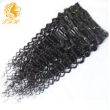 Kinky Straight Clip in Hair Extensions Human Virgin Hair Afro Kinky Straight Clip in Human Hair Extensions for African American