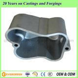 Casting/ Aluminum Die Casting/ Aluminum Die Casting Auto Parts (ADC-55)