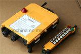 Complete Radio Remote Control Kits F21-16D
