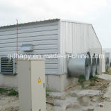 Hot Sale High Quality Prefabricated Poultry Farm and Poultry House