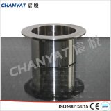 Stainless Steel Long Type Stub End A403 (304L, 316L, 317)
