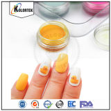 New Arrival 12 Colors Nail Acrylic Powder