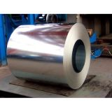 Galvanized Steel Can Be Used For PPGI