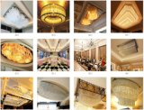 Hot Cuntom Made Project Lighting for Hotel Banquet with Ce/VDE Certificate