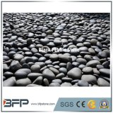 Garden Decorative Cobble Stones / Pebble Stone in China