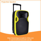 ODM 12 Inches Plastic Powered Projection Speaker with Excellent Performance