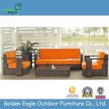 Outdoor Furniture Rattan/Wicker Sofa Set (S0018)
