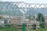Hot Dipped Galvanized Concertina Razor Barbed Wire Coil
