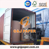 Good Quality Brown Kraft Paper in Roll