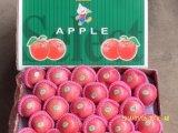 Golden Supplier of Chinese Origin (red: 90%) Fresh FUJI Apple