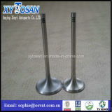 Engine Valves for Ford Fiesta/ BMW Benz Ford (all modles of car/truk/marine)