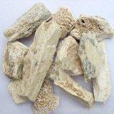 Drgonsbones Fossilizid Drgon′sbone Powder