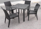 Mtc-025 PE Rattan Outdoor Wicker Dining Set