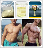 No Side Effect Steroids Powder L-Thyroxine T4 Muscle Growth 51-48-9