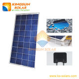 Poly Solar Panel/Solar Module 130-150W