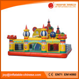 Giant Inflatable Tiger Garden for Kids Play (T6-004)