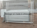Hot-Dipped Galvanized Temporary Wire Mesh Fence