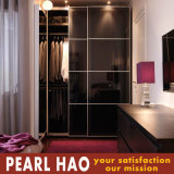 professional Design Lacquer Board Sliding Door Wardrobe