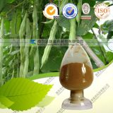 String Bean Extract Powder Zelang