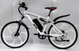 Magnesium Whole Wheel Mountain Electric Bicycle