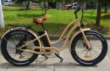 Easy Riding 26inch 500W Fat Tire Beach Electric Bicycle