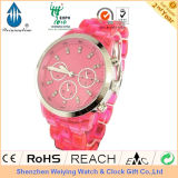 ABS Quartz Watch/ Fashion Ladies Watch (WY-AB001)