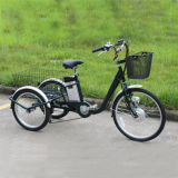 Best Price 3 Wheel Electric Bike From China