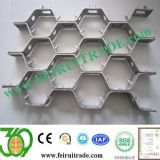 0Cr13/1Cr13Ni9/304H/316L/310S Hex Steel mesh