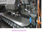 Aluminum-Plastic Laminated Tube Filling and Sealing Machine (HTGF-100)