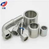 22291 Fitting Industrial Hydraulic High Pressure Rubber Hose Fitting Bsp Female Flat Seat Fitting