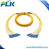 Multi-Cores 12 Cores Distribution Breakout Fiber Optic Patch Cord