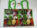 Bright Reusable Non Woven with OPP Lamination Bags
