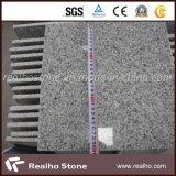 Popular Chinese Cheap Grey Granite G603 Granite