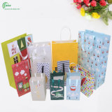 Professional Custom Paper Shopping Bag for Gift/Clothing/Cosmetic/Jewelry Packaging (KG-PB083)