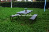 6FT Folding in Half Table with Rattan Design
