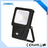 IP54 800lm Outdoor LED Project Light