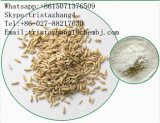 Factory Natural Oat Beta Glucan Extract Powder